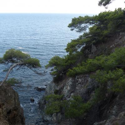 Presqu'île de Giens sur Sentier Littoral 2