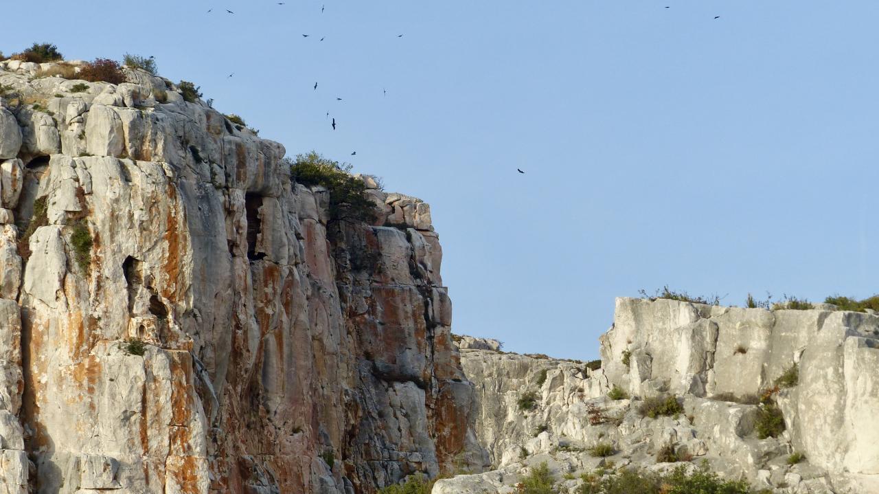 Die alten Steinbrüche von Calissanne