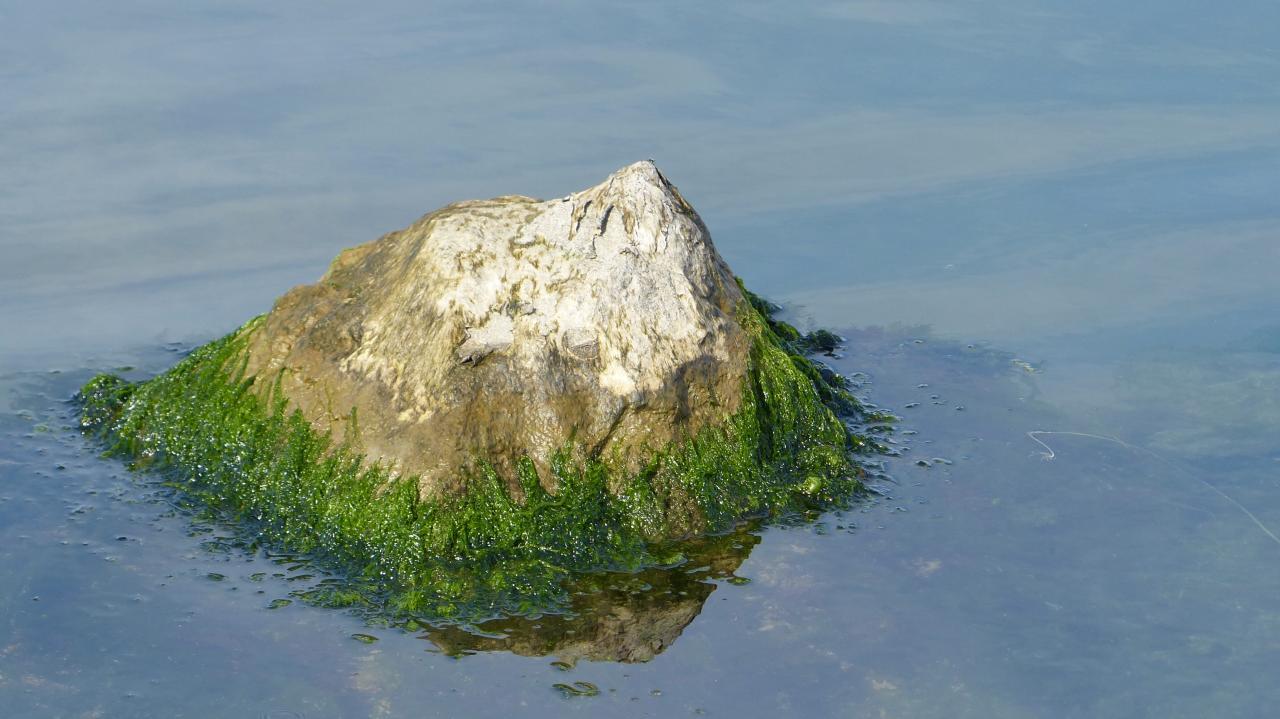 A Mountain Island in the Berre Sea