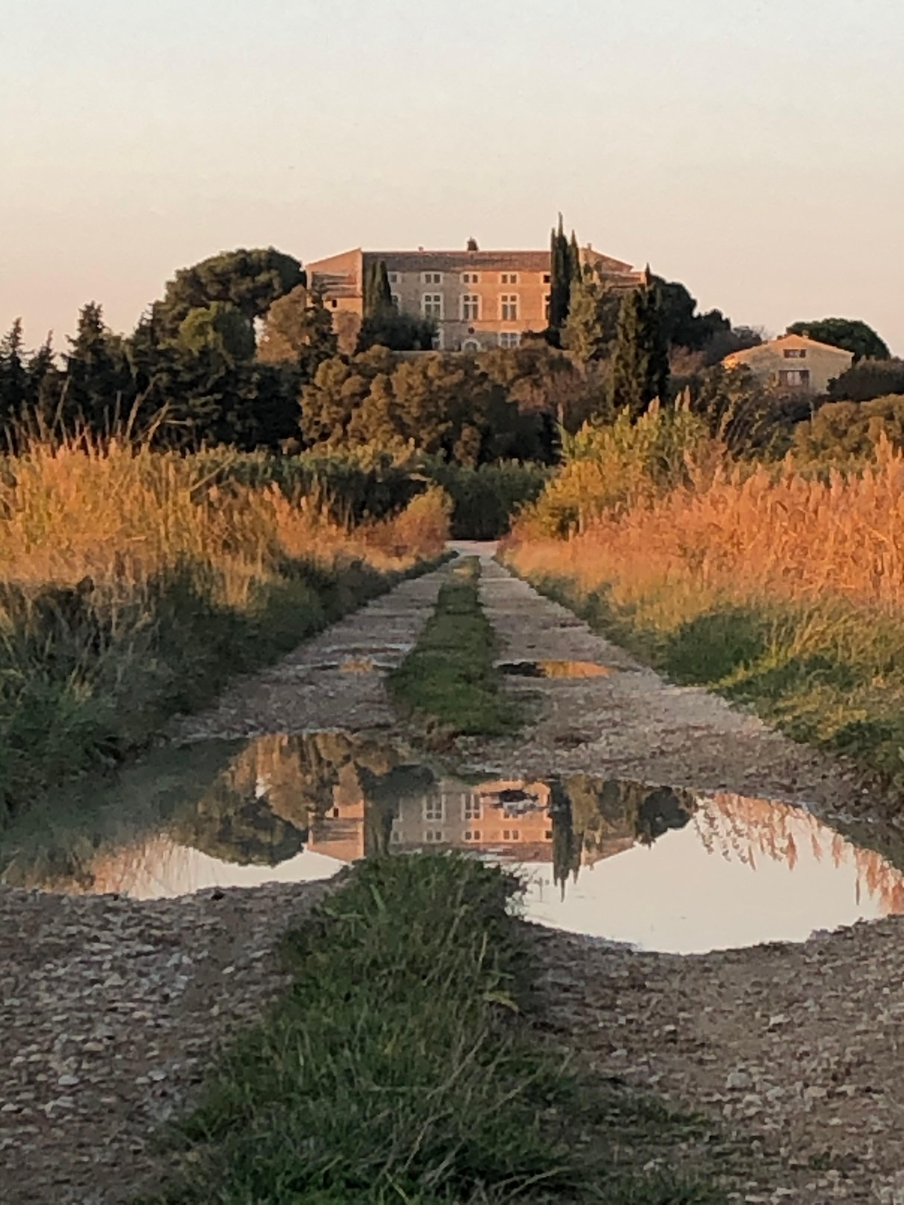 Chateau Confoux