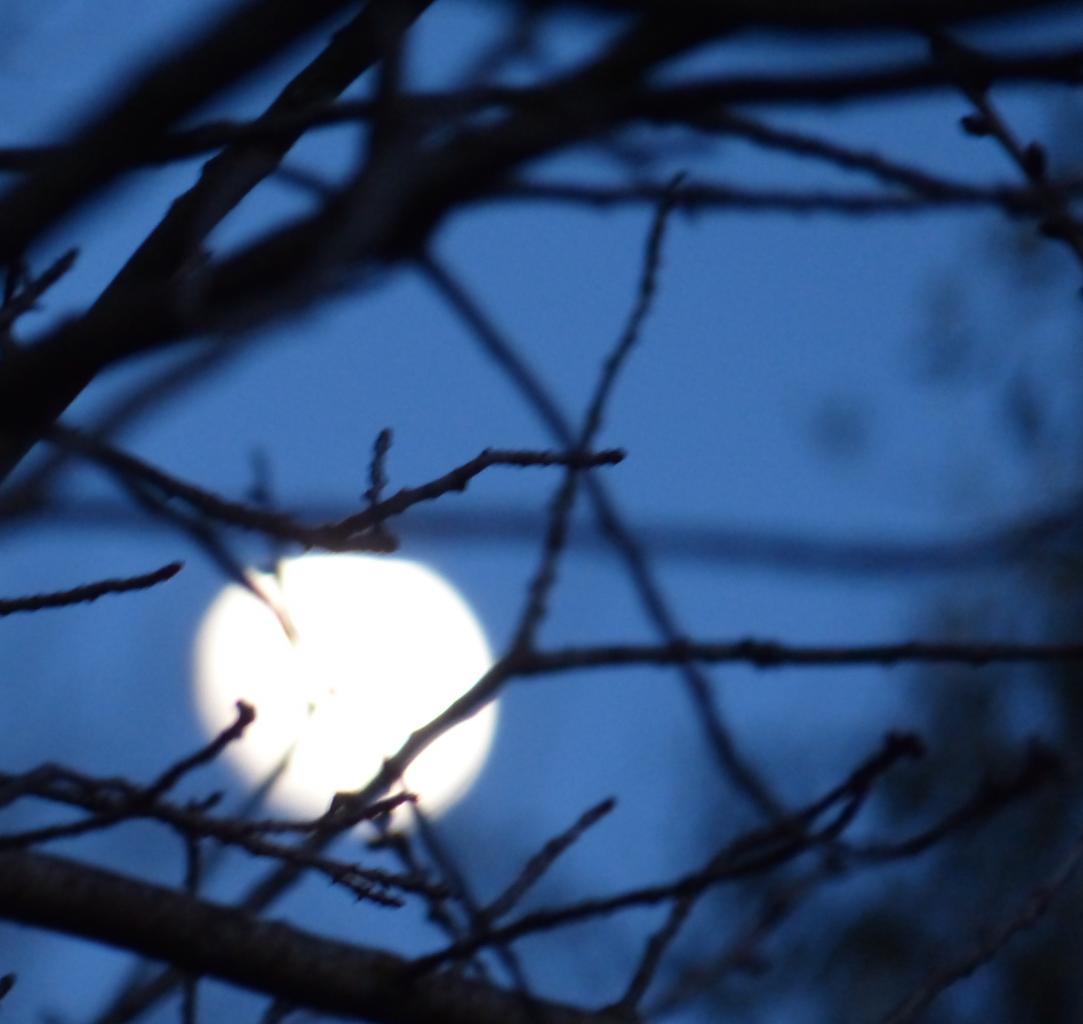 La lune de ce jour - Der Mond heute