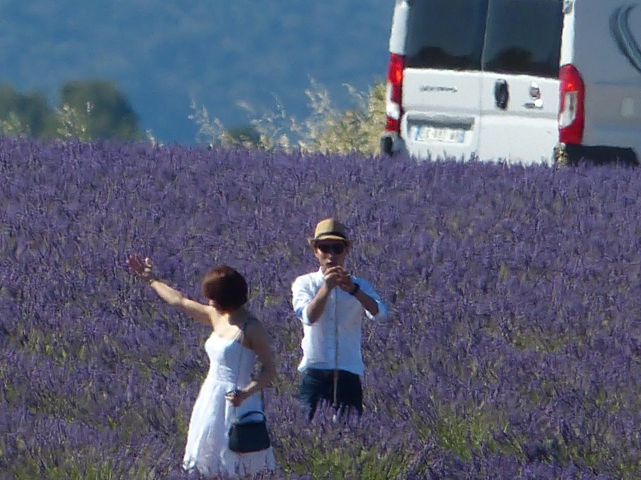Asia in Provence