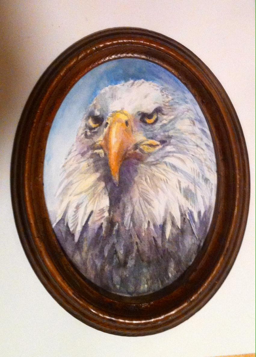 Portrait d'un aigle