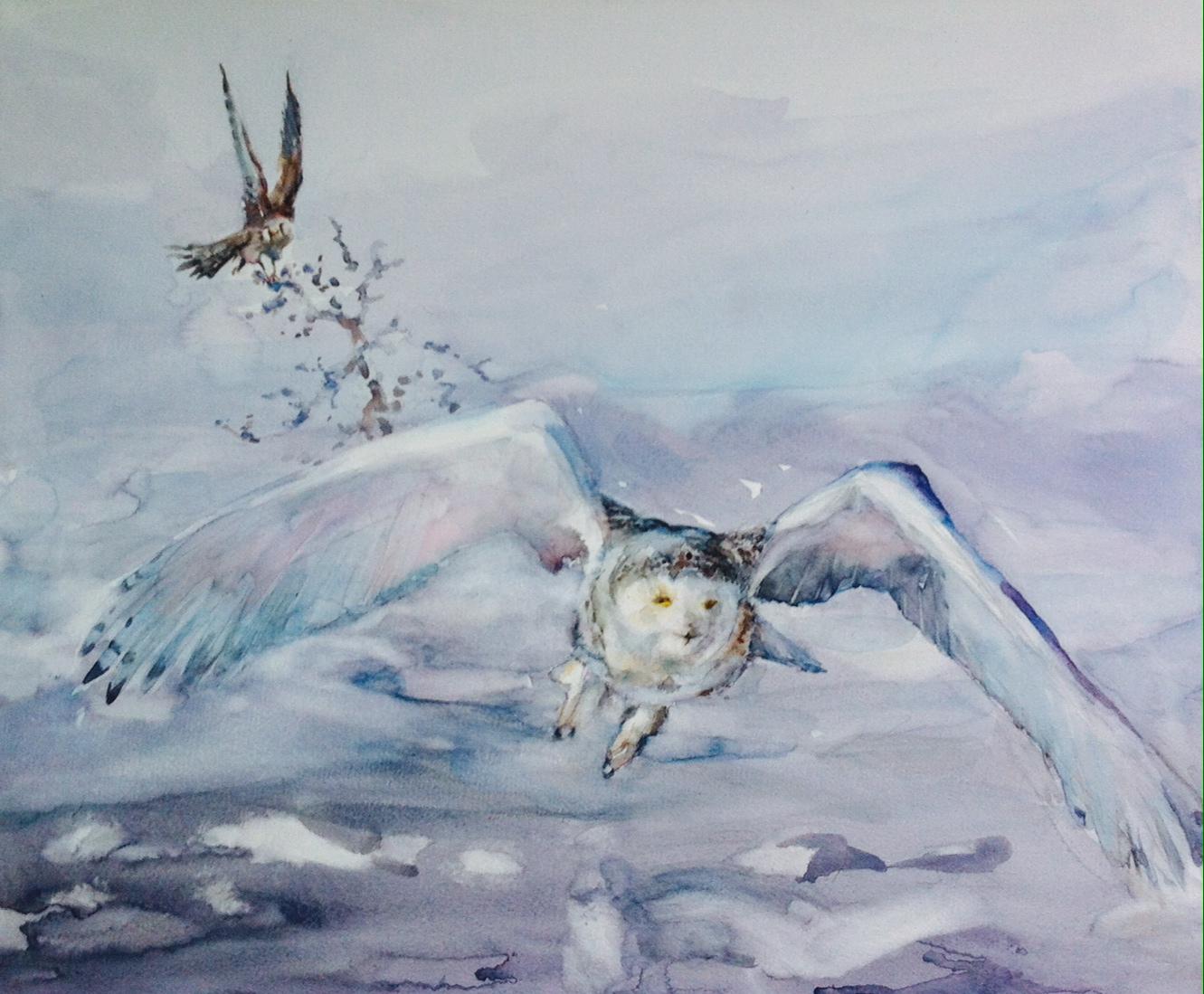 Snowbird