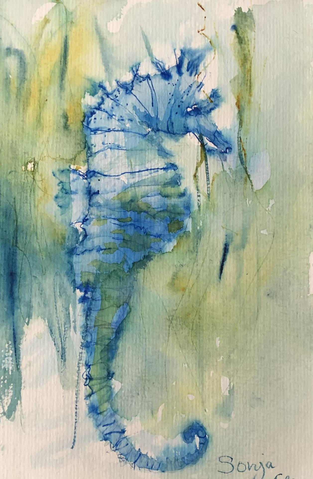 Aquarelle Seepferdchen