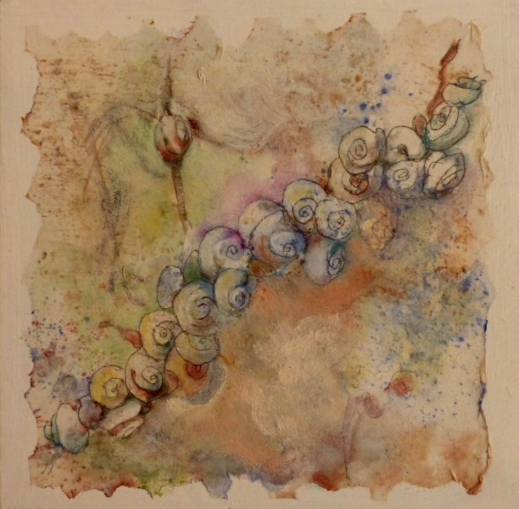 Escargots de Provence